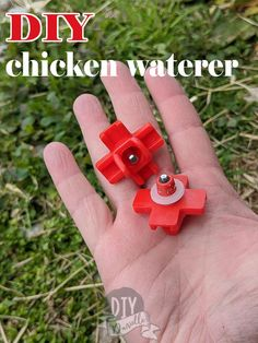 Learn how to make a quick and easy chicken waterer that keeps your chicken's water CLEAN and accessible to them for a few days! Work smarter, not harder on your homestead.  #poultry #chickens #DIY Raising Farm Animals, Chicken Waterer, Cat Dog, Diy Stuffed Animals, Guinea Pigs, Dog Friends, Pet Care, Poultry, Funny Animals