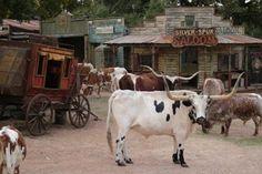 Enchanted Springs Ranch, Boerne, TX