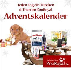 Bald ist es wieder soweit und Weihnachten steht vor der Tür! Versüßt euch die Wartezeit bis zum Fest doch mit unserem tierischen Adventskalender!   Hier warten jeden Tag tolle Gewinnspiele auf euch und eure Lieblinge, schaut unbedingt regelmäßig vorbei!  Viel Spaß und viel Glück!  Was sich wohl hinter Türchen 1 versteckt? Erfahrt es hier: http://www.zooroyal.de/zooroyal-adventskalender