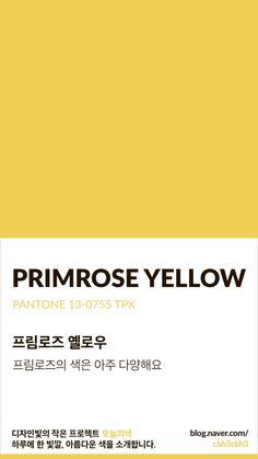 Color of today: Primrose Yellow디자인빛의 작은 프로젝트 오늘의색은 하루에 한 빛깔, 아름다운 색과 ...
