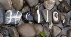 This Guy Collected A Complete Stone Alphabet Over 10 Years | Bored Panda