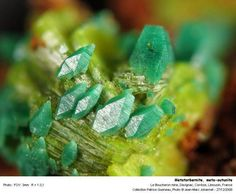 Metatorbernite is a radioactive phosphate mineral, and is a dehydration pseudo morph of torbernite. Chemically, it is a copper uranyl phosphate and usually occurs in the form of green platy deposits.