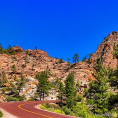 Beautiful scenes at every corner in Zion national park.