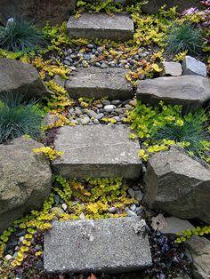 steps: stones & pebbles