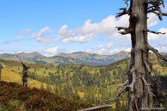 lebe-deinen-Traum: Wandertour in der Moorlandschaft .... über den Wannenkopf zum Riedberger Horn ....