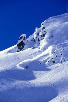 Blue sky and powder!!  Snowboarding at its finest.