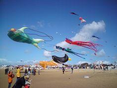 fête du cerf-volant à Chatelaillon, KIte festival Chatelaillon ( south west coast)