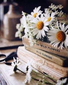 Spring Aesthetic, Book Aesthetic, Flower Aesthetic, Aesthetic Vintage, Aesthetic Photo, Aesthetic Pictures, Nature Aesthetic, Aesthetic Girl, Book Flowers