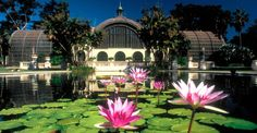 Balboa Park, San Diego. This is a wonderful place to go. I fell in love with it as a kid and moved to SD because of it.