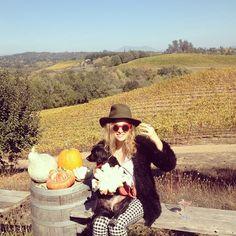 Fall Fridays. #shopcamp #wesleepintents #winecountry