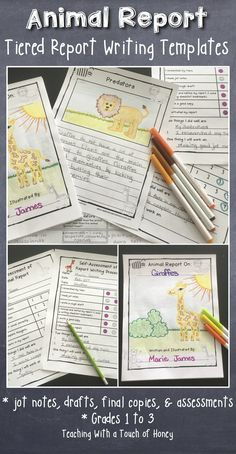Differentiated report writing templates for kids in Grade 1 to Grade 3 to help them with the report writing process. Tiered templates for each step of the writing process match the different learning needs of the students in your classroom. CLICK to check it out today!