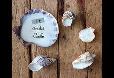 DIY: Seashell Candles | HGTV Canada
