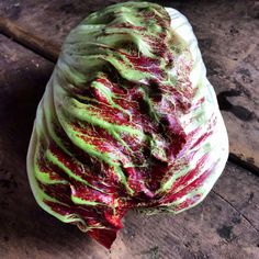 The most beautiful vegetable we grow, Organic Vegetables, Cabbage, Most Beautiful, Food, Essen, Cabbages, Meals, Yemek, Brussels Sprouts