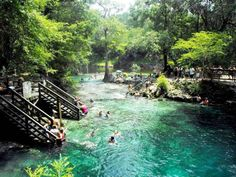 Visit Kitch-iti-kipi, Michigan\'s largest (and clearest) freshwater spring