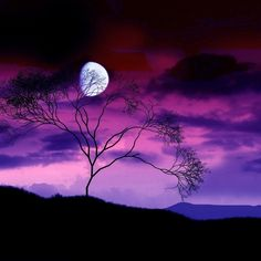 Beautiful colors and moon
