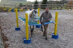 Horse obstacle course | Horse Agility n Trail obstacles | Pinterest | Horses, Obstacle Course ...