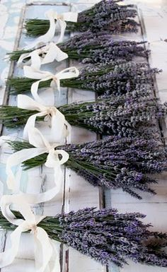 bundles of wild lavender in vases wrapped in emerald ribbons