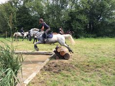cross with my beutiful horse<3