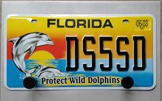 Patère plaque immatriculation américaine Floride : Décorations murales par recycraft