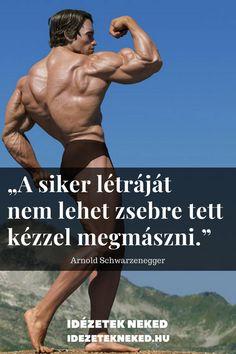 Daily Wisdom, Gym Quote, Minden, Arnold Schwarzenegger, Work Quotes, Positivity, Wrestling, Humor, Motivation