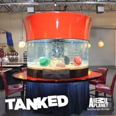 Tanked the worlds best aquarium show on pinterest for Fish tank show