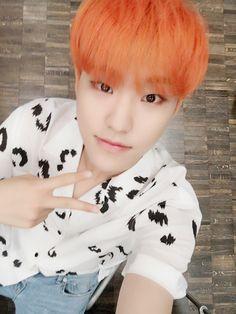 세븐틴(SEVENTEEN) (@pledis_17) | Twitter i am slowly getting used to seeing his orange hair...still far from my favorite but he is naturally adorable | Hoshi | Kwon Soonyoung | svt