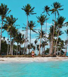 Pinagbuyutan Island, El Nido, Palawan Palawan, Island Resort, World Traveler, Mother Nature, Philippines, Beaches, Villa, Explore, Water