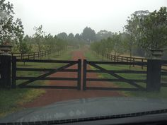Gates and tree line driveway. Black fence.