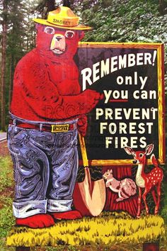 """Smokey the Bear! Remember the little girl in the commercial said, """"Smokey Bear come and blowed the fire out! The Good Old Days, Those Were The Days, Vintage Advertisements, Vintage Ads, Project Life, Smokey The Bears, Into The Fire, Good Ole, My Childhood Memories"""