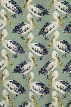 Paul & Joe pelicans