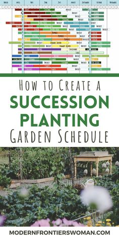 How to Make a Succession Garden Schedule - - Do you wish you could get more out of your vegetable garden space? By creating a succession planting schedule, you can! Increase yields from all your crops with proper planning and foresight. Magic Garden, Veg Garden, Vegetable Garden Design, Edible Garden, Garden Beds, Garden Plants, Veggie Gardens, Vegetable Gardening, How To Garden