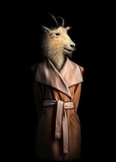 """""""Second Skins"""" – New Fashionably Dressed Animals Photographed by Miguel Vallinas"""