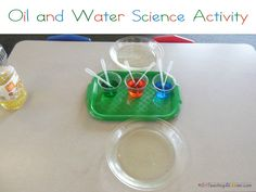 Oil & Water science activity.  This is a great idea for Thanksgiving science!