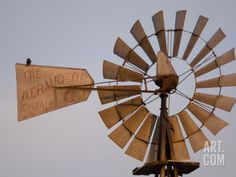 A Bird Perches on a Windmill at the Historical Steven's Creek Farm Photographic Print by Joel Sartore at Art.com