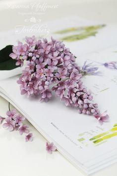 lilac by Tortenherz