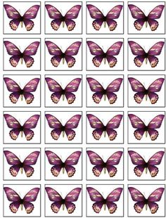 24 for £1.65 - rice paper butterflies