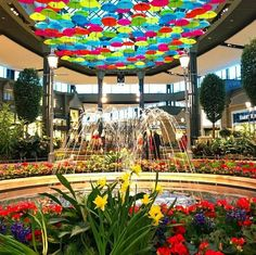 Laval, Canada, Spring, Ferris Wheel, Centre, Fair Grounds, Around The Worlds, Flowers, Commercial