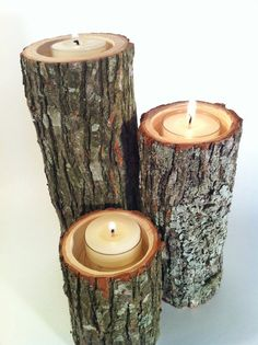 Tree stump tealight holders