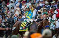 Resultado de imagen para pictures horses of racing