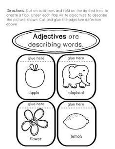 possessive nouns zoo worksheet or assessment singular