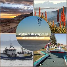 Garden Route places to stay and unwind. Holiday Home Rentals for everyone! Great Places, Places To See, Holiday Accommodation, Things To Do, Southern, Villa, Awesome, Check, Garden