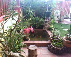 Tips Cara Membuat Taman Indah di Sekitar Rumah
