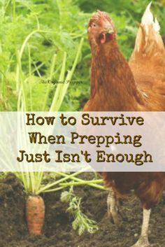 There are some situations you simply can't prep for. And for those situations, you must be self-reliant and realistic.   The Organic Prepper via @theorganicprepper
