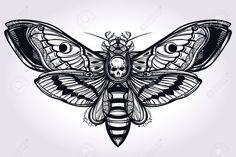 мертвая голова мотылек - Поиск в Google