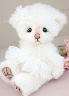 Three O'Clock Bears: Lucinda available for adoption