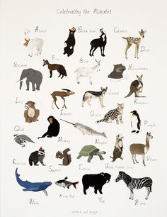 animal alphabet poster / featured on discoverpaper.com