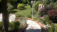 Erbacee perenni del mio giardino roccioso