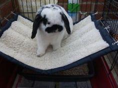 Rabbit-Hammock-a-cosy-pet-bed-large