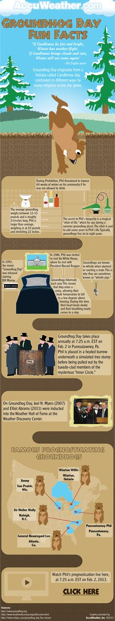 Groundhog Day Fun Facts. Hmm, did you know that Pennsylvania's Punxsutawney Phil is not the only prognosticating groundhog in the US?!