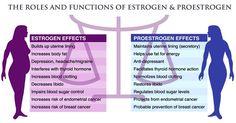 foods-to-balance-your-hormones